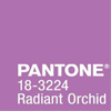 Wedding Colours: Radiant Orchid