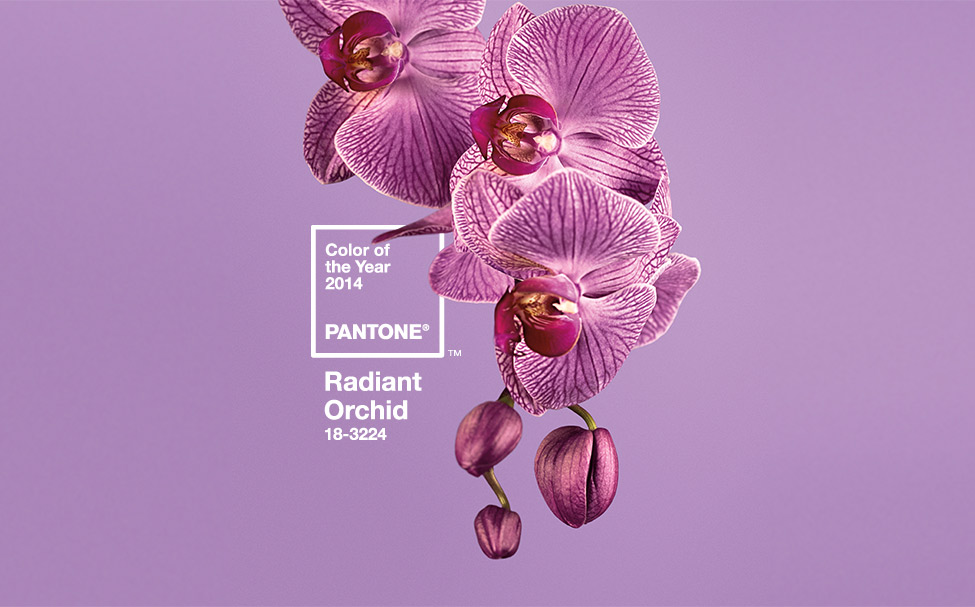 Pantone Colour of 2014: Radiant Orchid