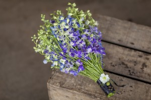 British Flowers Week – Presenting Zita Elze