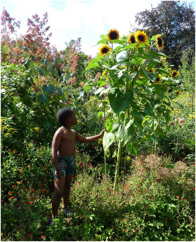 A little black boy wearing Agatha Cub floral print swim trunks
