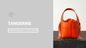 Fashion stylist @styledbypierrecarr helps you to get to know handbags for the season